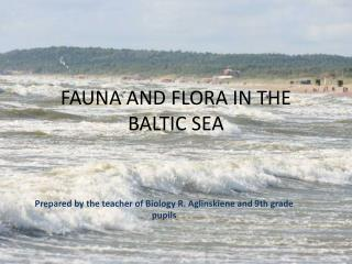 FAUNA AND FLORA IN THE BALTIC SEA