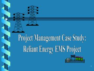Project Management Case Study: Reliant Energy EMS Project