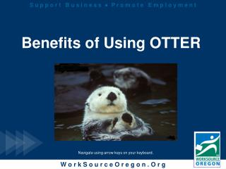 Benefits of Using OTTER