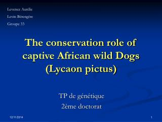 The conservation role of captive African wild Dogs (Lycaon pictus)