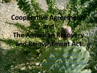 Cooperative Agreements and The American Recovery and Reinvestment Act