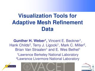 Visualization Tools for Adaptive Mesh Refinement Data