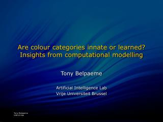 Are colour categories innate or learned? Insights from computational modelling