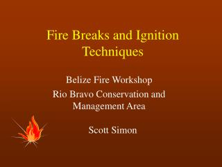 Fire Breaks and Ignition Techniques