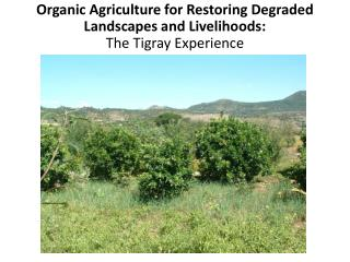 Organic  Agriculture for Restoring Degraded Landscapes and Livelihoods:  The Tigray Experience