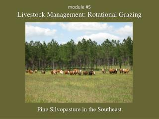 module  #5 Livestock Management: Rotational Grazing