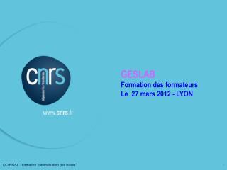 GESLAB Formation des formateurs Le  27 mars 2012 - LYON