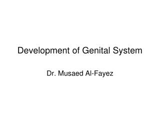 Development of Genital System