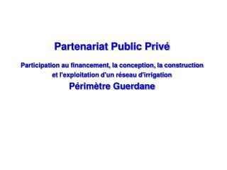 Partenariat Public Priv� Participation au financement, la conception, la construction