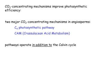 CO 2 -concentrating mechanisms improve photosynthetic efficiency: