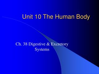 Unit 10 The Human Body