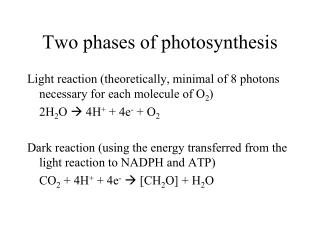 Two phases of photosynthesis
