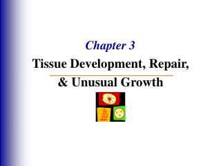 Chapter 3 Tissue Development, Repair, & Unusual Growth