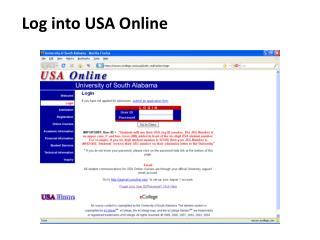 Log into USA Online