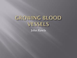 Growing Blood Vessels