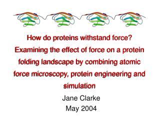 Jane Clarke May 2004