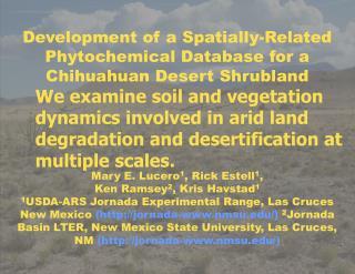 determine the volatile composition of JER plants