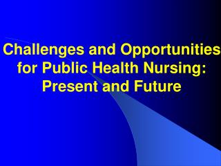 Challenges and Opportunities for Public Health Nursing: Present and Future