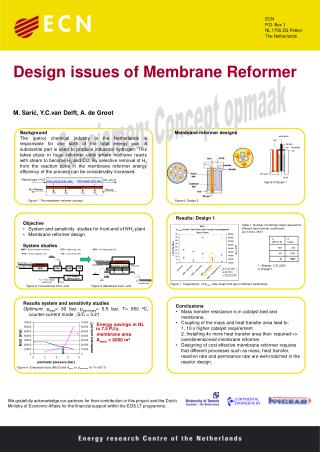 Design issues of Membrane Reformer