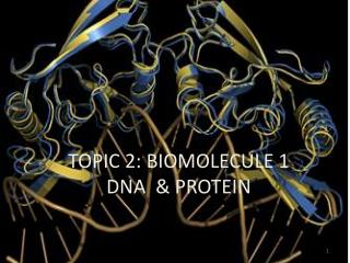 TOPIC 2: BIOMOLECULE 1 DNA  & PROTEIN