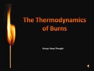 The Thermodynamics o f Burns