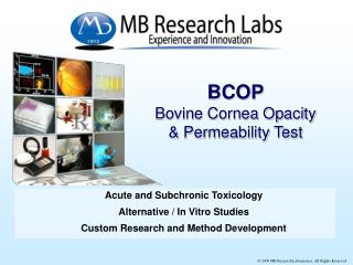 BCOP Bovine Cornea Opacity   Permeability Test