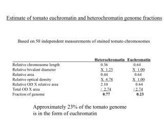 Heterochromatin Euchromatin Relative chromosome length      0.36      0.64