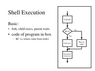 Shell Execution
