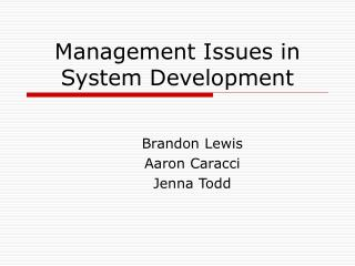 Management Issues in System Development
