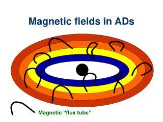 Magnetic fields in ADs
