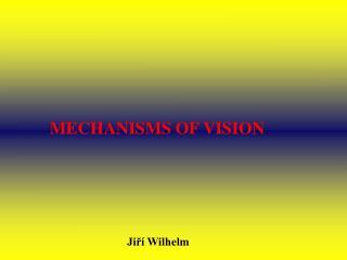 MECHANISMS OF VISION