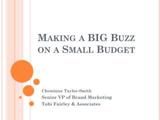 Making a BIG Buzz  on a Small Budget