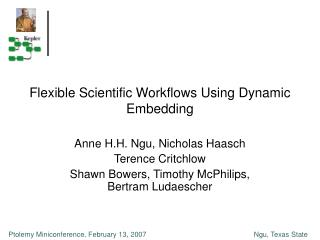 Flexible Scientific Workflows Using Dynamic Embedding