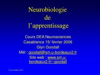 Neurobiologie  de  l'apprentissage