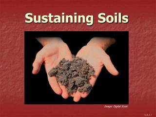 Sustaining Soils