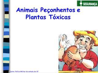 Animais Pe onhentos e Plantas T xicas
