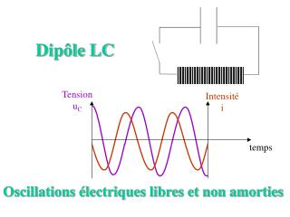 Dipôle LC