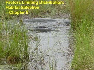 Factors Limiting Distribution:  Habitat Selection  – Chapter 5