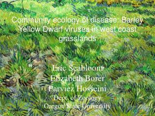 Community ecology of disease: Barley Yellow Dwarf viruses in west coast grasslands  Eric Seabloom