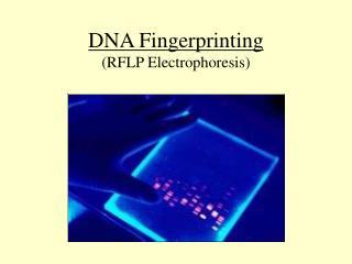 DNA Fingerprinting (RFLP Electrophoresis)