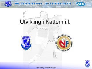 Utvikling i Kattem i.l.