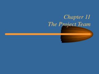 Chapter 11 The Project Team