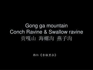 Gong ga mountain Conch Ravine & Swallow ravine 贡嘎山 海螺沟 燕子沟