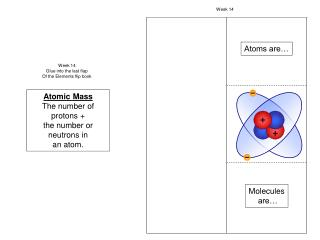 Atomic Mass The number of protons + the number or neutrons in  an atom.
