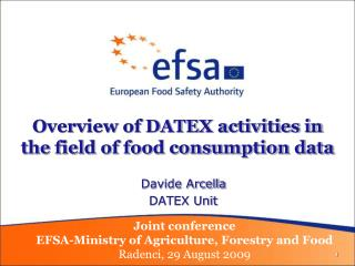 Overview of DATEX activities in the field of food consumption data
