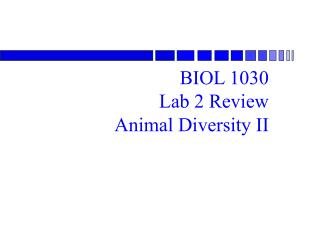 BIOL 1030 Lab 2 Review Animal Diversity II