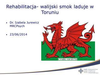 Rehabilitacja- walijski smok laduje w Toruniu