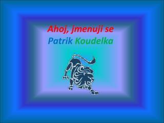 Ahoj, jmenuji se  Patrik Koudelka