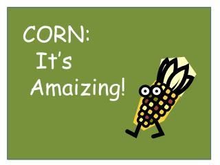 CORN:   It's  Amaizing!