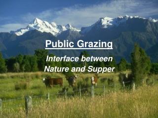 Public Grazing